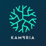 Kambria  Price Down 9.4% Over Last 7 Days