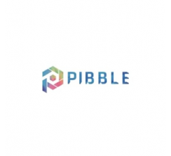 Image for PIBBLE Price Reaches $0.0011 on Exchanges (PIB)