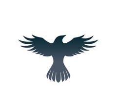 Image for Raven Protocol (RAVEN) Market Capitalization Hits $4.21 Million