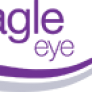 Eagle Eye Solutions Group  Trading Up 2.1%