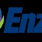 Enzo Biochem, Inc. (NYSE:ENZ) Major Shareholder Purchases $23,200.00 in Stock