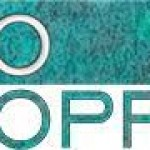 Ero Copper (TSE:ERO) Price Target Increased to C$22.00 by Analysts at Raymond James