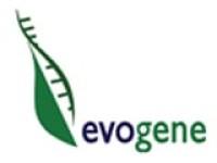Evogene (NASDAQ:EVGN) Share Price Crosses Above 50-Day Moving Average of $1.63