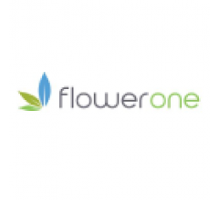 Image for Flower One (OTCMKTS:FLOOF) Stock Price Up 3.8%