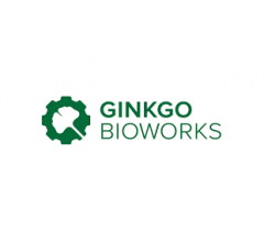 Image for Ginkgo Bioworks (NYSE:DNA)  Shares Down 6.6%