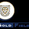 Ruffer LLP Has $53.53 Million Holdings in Gold Fields Limited (GFI)
