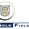 Gold Fields  & Its Peers Critical Analysis