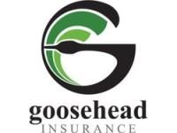 Insider Selling: Goosehead Insurance Inc (NASDAQ:GSHD) CEO Sells 400 Shares of Stock