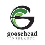 Goosehead Insurance (NASDAQ:GSHD)  Shares Down 4.8%  on Insider Selling