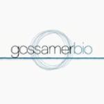 Gossamer Bio, Inc. Expected to Post FY2022 Earnings of ($2.83) Per Share (NASDAQ:GOSS)