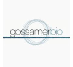 Image for Rafferty Asset Management LLC Sells 60,778 Shares of Gossamer Bio, Inc. (NASDAQ:GOSS)