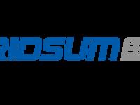 Gridsum (NASDAQ:GSUM)  Shares Down 8.4%