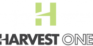 Harvest One Cannabis  Trading Down 7.7%