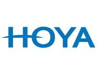 Critical Survey: GRUPO CARSO S A/S (OTCMKTS:GPOVY) and Hoya (OTCMKTS:HOCPY)