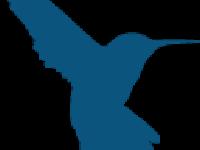 Hummingbird Resources (OTCMKTS:HUMRF) Downgraded to Hold at Berenberg Bank