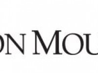 WASHINGTON TRUST Co Has $212,000 Stake in Iron Mountain Inc (NYSE:IRM)