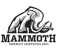 Image for Dimensional Fund Advisors LP Sells 72,432 Shares of Mammoth Energy Services, Inc. (NASDAQ:TUSK)