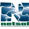 NetSol Technologies  CEO Najeeb Ghauri Purchases 2,500 Shares of Stock