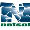 Somewhat Positive Media Coverage Somewhat Unlikely to Affect NetSol Technologies  Stock Price