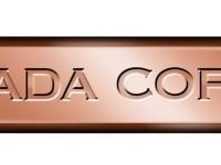 Nevada Copper (TSE:NCU)  Shares Down 8.6%