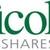 Insider Buying: Nicolet Bankshares Inc  Director Acquires $249,606.00 in Stock