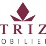 """Patrizia Immobilien AG (SWX:P1Z) Receives Consensus Rating of """"Buy"""" from Analysts"""