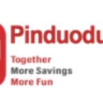 Daiwa Securities Group Inc. Boosts Holdings in Pinduoduo Inc. (NASDAQ:PDD)