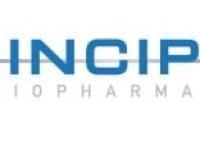 Principia Biopharma Inc (NASDAQ:PRNB) Director Alan Colowick Sells 7,500 Shares