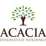 EchoStar  and Proxim Wireless  Critical Analysis