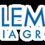 Stuart W. Epperson Buys 23,346 Shares of Salem Media Group Inc (NASDAQ:SALM) Stock