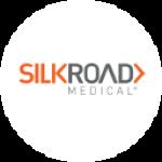 AdvisorNet Financial Inc Takes Position in Silk Road Medical, Inc (NASDAQ:SILK)