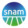 SNAM S P A/ADR  Stock Price Down 0.6%