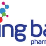 Spring Bank Pharmaceuticals (NASDAQ:SBPH) Stock Price Up 14.6%