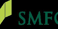Investors Buy Large Volume of Sumitomo Mitsui Financial Grp Put Options