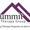 Summit Therapeutics  Receiving Somewhat Positive Press Coverage, Accern Reports