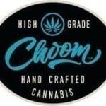 Raymond James Analysts Give Surge Energy (TSE:SGY) a C$0.50 Price Target
