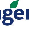 Reviewing CF Industries (CF) & Syngenta (SYT)