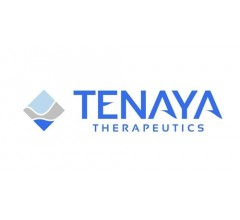 Image for Tenaya Therapeutics (NASDAQ:TNYA) Posts  Earnings Results, Misses Expectations By $12.73 EPS