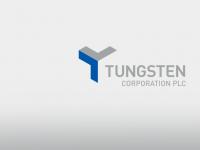 Tungsten Corp PLC (LON:TUNG) Insider Purchases £8,250 in Stock