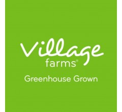 Image for Village Farms International (VFF) to Release Earnings on Monday
