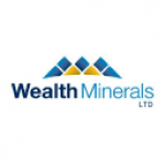 Battle North Gold (OTCMKTS:BNAUF) vs. Wealth Minerals (OTCMKTS:WMLLF) Financial Survey