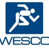 WESCO International  Director Lynn M. Utter Sells 768 Shares