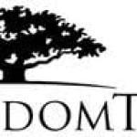 Wisdom Tree Investments (NASDAQ:WETF) Trading Down 5.2%