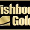 Wishbone Gold (LON:WSBN) Sets New 52-Week Low at $0.02