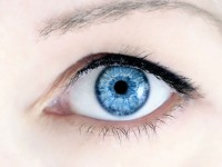 Stem Cell Research Could Result in Cornea Replacement For Cataract Patients Within the Next Few Years