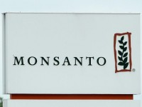 Monsanto Agrees To Bayer's Takeover Bid