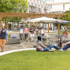 Facebook Building Village With Housing, Hotel and Stores