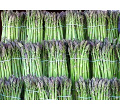 Image for Amino Acid In Asparagus Linked To Breast Cancer
