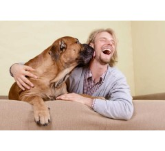 Image for Pet Translators Expected To Hit The Market In The Next Few Years