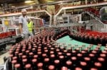 Strong Dollar Results to Lower Coca-Cola Earnings